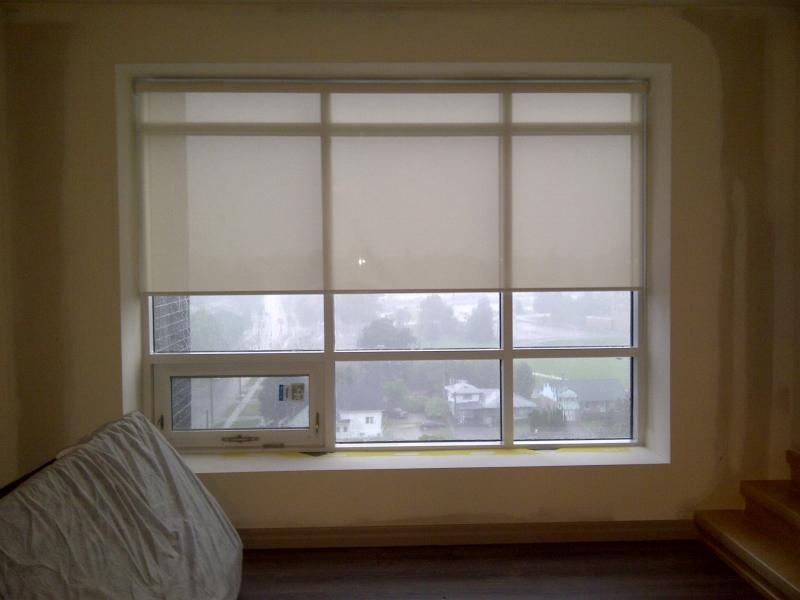 front door shutters milton window coverings