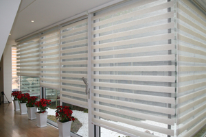 Dual Shades Blinds