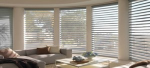 Bay Window Coverings - Blinds